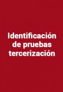 Identificación de pruebas tercerización